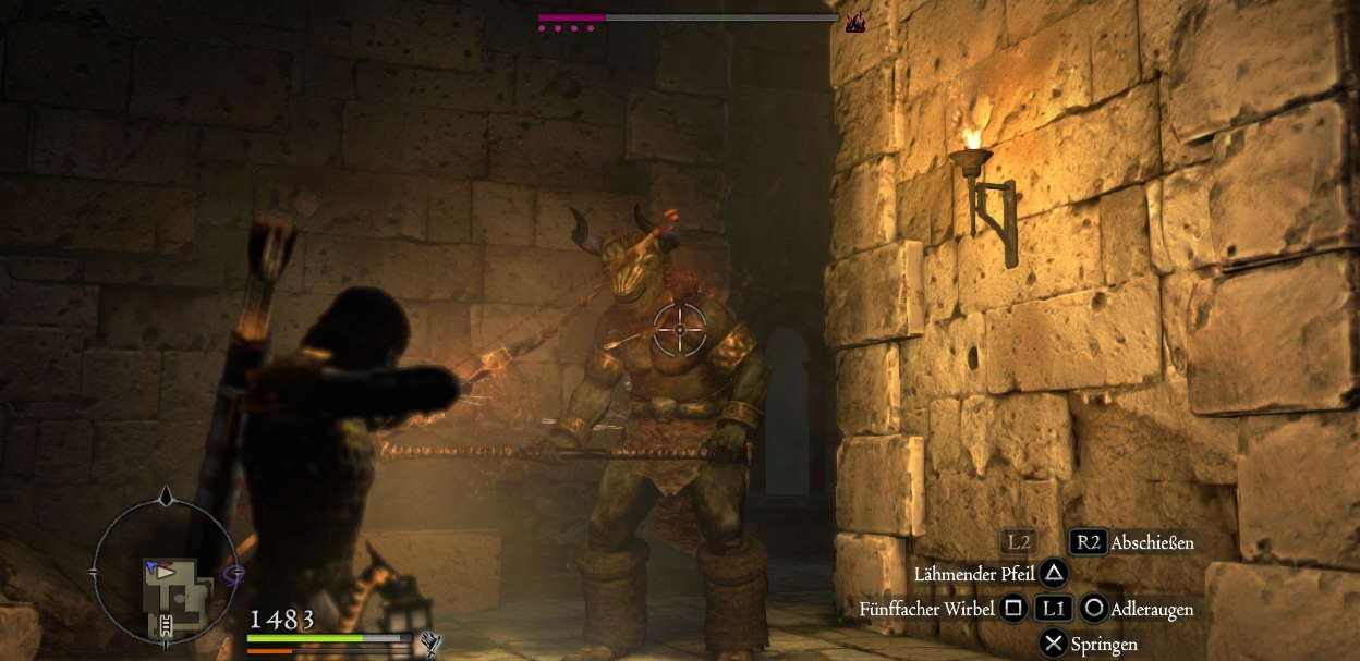 Dragon s dogma dark arisen подарки 53
