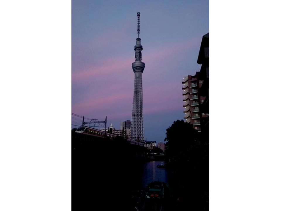 sa-40-Skytree-rötlich_0.JPG