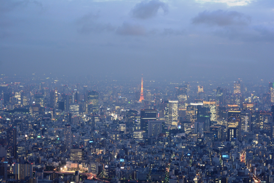 so_35_skytree-tokyotower1.JPG