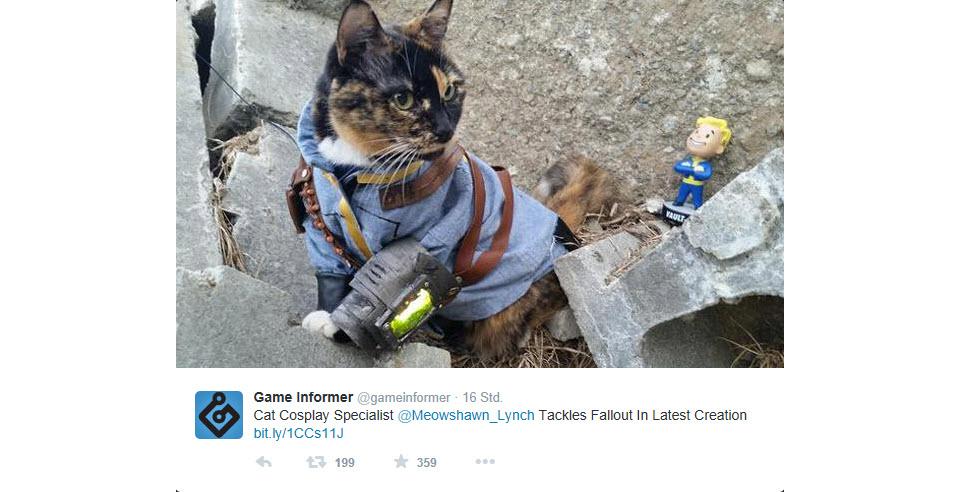 catsplay.jpg