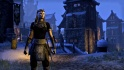 gc13-bethesda-the-elder-scrolls-online.jpg
