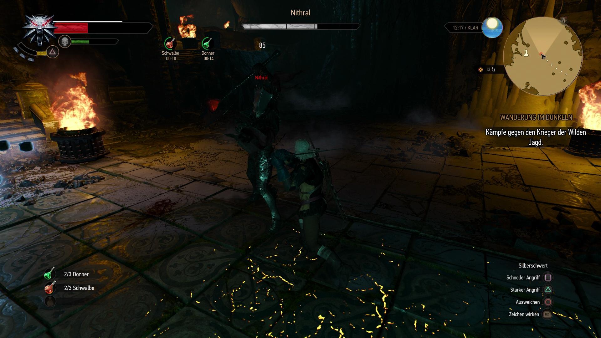 The witcher 3 wanderung im dunkeln